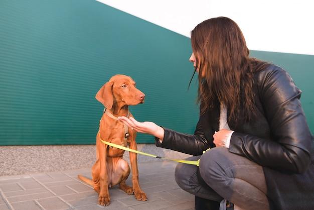 Brązowy pies i kochanka siedzą na ulicy