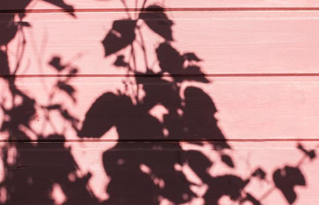 Brązowy różowy drewno ściana grunge tekstury ściana liść warzyw cień tło. letnie tło z minimalną koncepcją, nieostrość