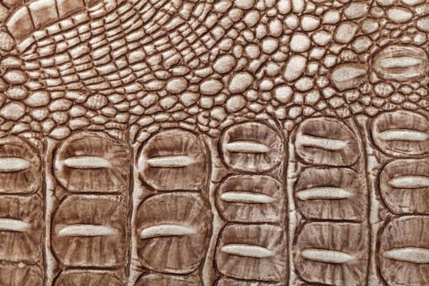 Brązowy skórzany tekstura tło. zbliżenie zdjęcie. gadów skóry.