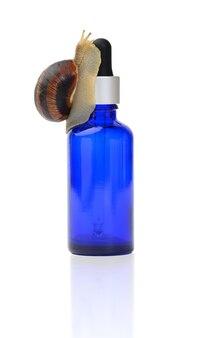 Brązowy ślimak siedzi na niebieskiej szklanej przezroczystej butelce z pipetą, łupem na białym tle. kosmetyki naturalne
