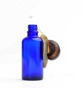 Brązowy ślimak siedzi na niebieskiej szklanej przezroczystej butelce z pipetą, produkt na białej powierzchni. kosmetyki naturalne