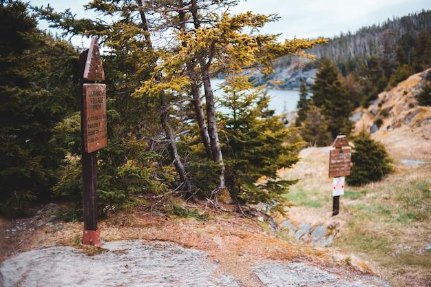 Brown drewniany signage blisko zielonych drzew podczas dnia