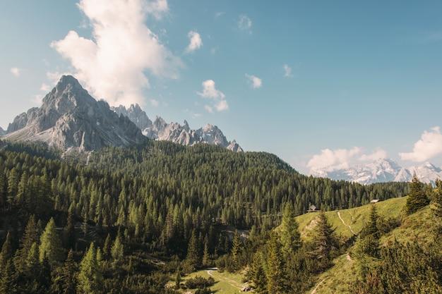 Brown gór krajobraz przy dniem