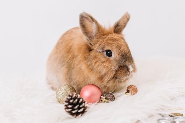 Brown królik z błyszczącymi baubles