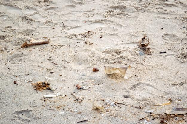 Brudna plaża z plastikowymi śmieciami i zanieczyszczonym środowiskiem.