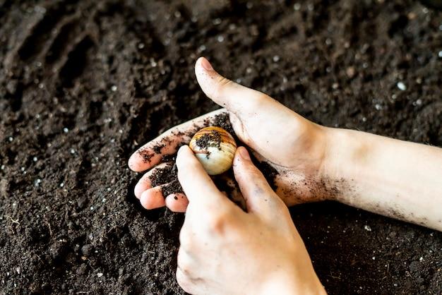 Brudne, zabłocone ręce stanowią klejnot w ziemi