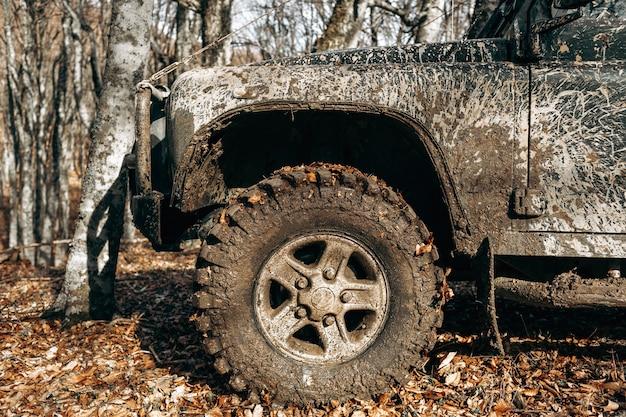 Brudny samochód terenowy na wycieczkę w lesie