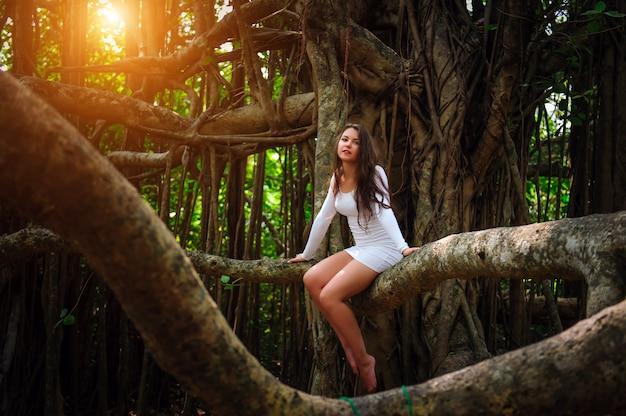 Brunetka z długimi włosami siedzi na drzewie z kręconymi gałęziami. młoda atrakcyjna dziewczyna w krótkiej białej sukni siedzi na drzewie banyan w słoneczny letni dzień