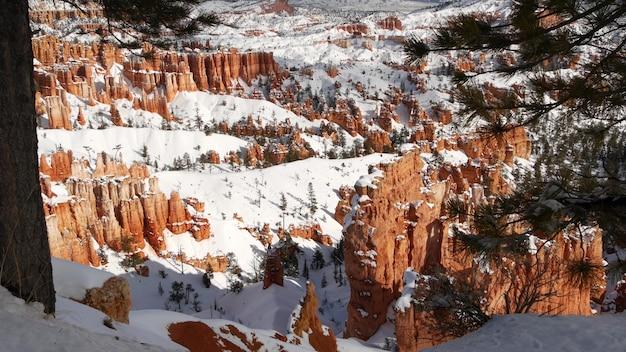 Bryce canyon zimą, śnieg w stanie utah, usa. hoodoos w amfiteatrze, zerodowana płaskorzeźba, panoramiczny punkt widokowy. unikalna pomarańczowa formacja. czerwony piaskowiec i iglasty sosna lub jodła. ekoturystyka w ameryce