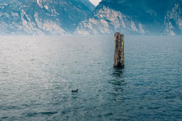 Brzeg jeziora garda. włochy.
