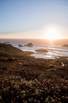 Brzeg morza w pobliżu roślin o wschodzie słońca