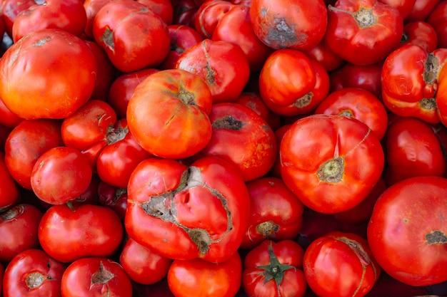 Brzydkie pomidory
