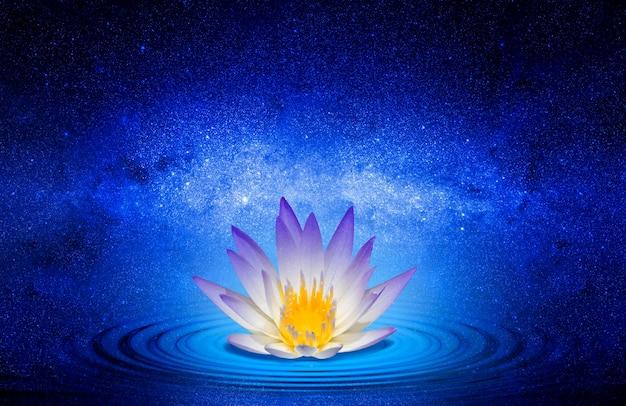 Buddyjski kwiat lotosu