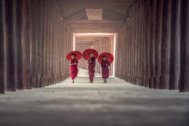 Buddyjski nowicjusz chodzi w świątyni, myanmar