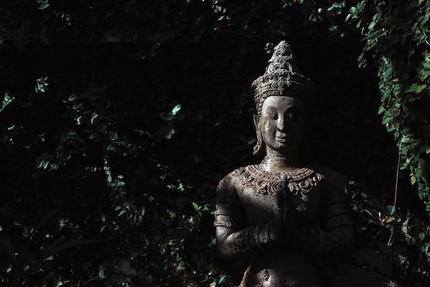 Buddyzm zbliżenie na posągi lub modele portretu buddy