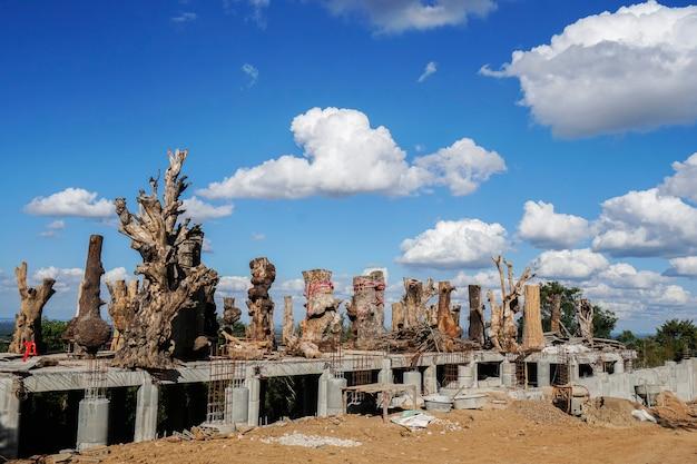 Budynek jest nadal w budowie i składa się z wielu dużych drzew.
