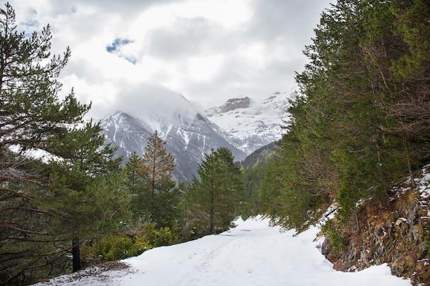 Bujaruelo dolina w parku narodowym ordesa y monte perdido ze śniegiem.