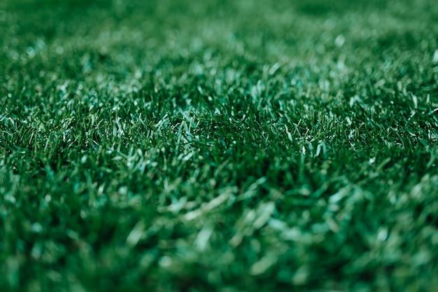 Bujny zielony trawnik w modnym kolorze sportowym murawa piłka nożna łąka murawa