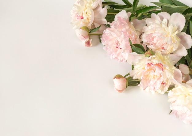 Bukiet beżowo-różowych kwiatów piwonii na jasnym tle papieru z miejscem na tekst