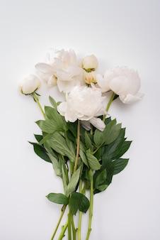 Bukiet białe peonie na białym tle