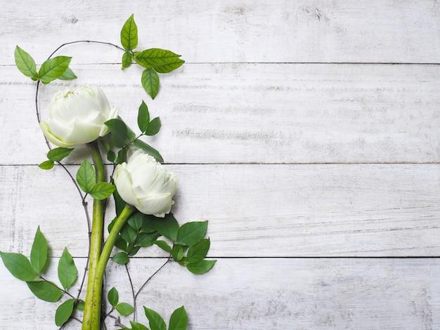 Bukiet białych kwiatów lotosu