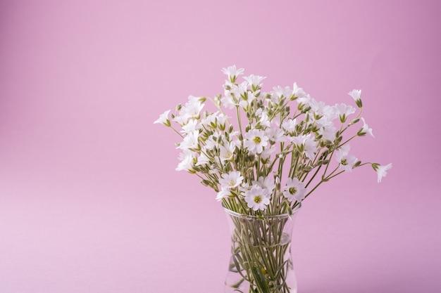 Bukiet białych kwiatów w szklanym wazonie na różowo