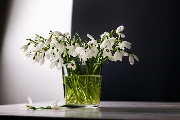 Bukiet białych przebiśniegów galanthus nivalis w szklanym słoju w ciemnych odcieniach na drewnianej powierzchni, martwa natura w udawanej nieostrożności.
