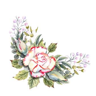 Bukiet białych róż z różowym brzegiem, listkami, jagodami, ozdobnymi gałązkami. ilustracje akwarelowe do projektowania kart okolicznościowych, zaproszeń itp.