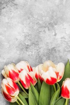 Bukiet białych różowych tulipanów na szarym tle. widok z góry, miejsce