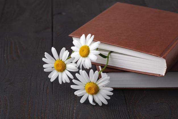 Bukiet białych stokrotek na starej książce