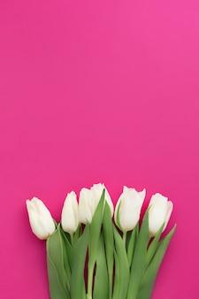 Bukiet białych tulipanów na fioletowo różowym tle