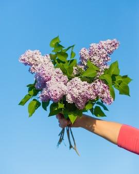 Bukiet bzu w dłoni kobiety, kwiaty w dłoni na błękitnym tle.