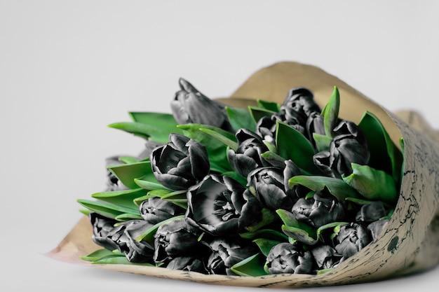 Bukiet czarnych tulipanów wiosna na białej ścianie.