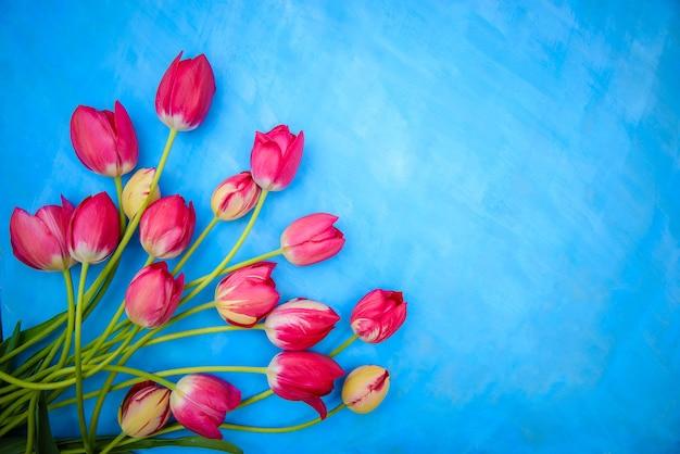 Bukiet czerwonych i różowych tulipanów na niebieskiej powierzchni