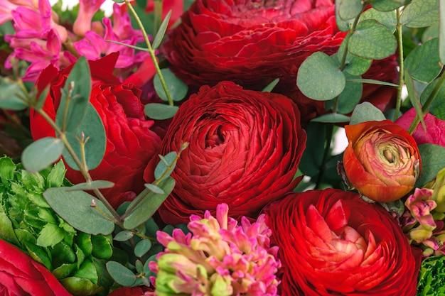 Bukiet czerwonych kwiatów ranunkulyus