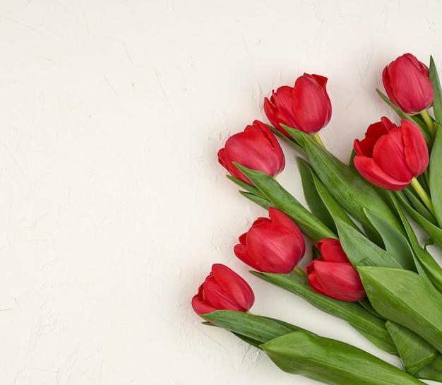 Bukiet czerwonych kwitnących tulipanów z zielonymi łodygami i liśćmi
