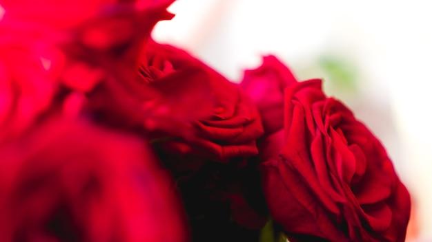 Bukiet czerwonych róż z wolnym miejscem na tekst. selektywne skupienie