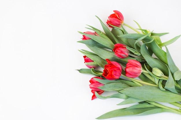 Bukiet czerwonych tulipanów i wolne miejsce na tekst