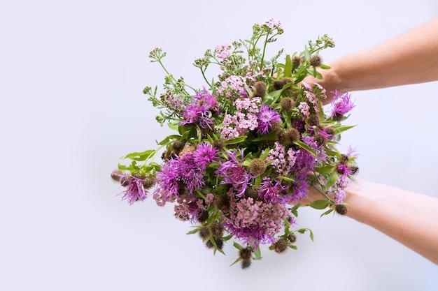 Bukiet dzikich fioletowych kwiatów w kobiecej dłoni