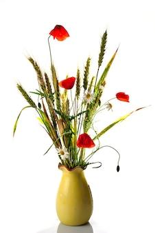 Bukiet dzikich kwiatów ze stokrotką pszenicy, maku i ox-eye isolaed na białym tle. niewielka głębokość pola.