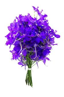 Bukiet fioletowych kwiatów na białym tle.