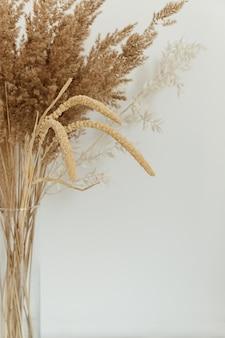 Bukiet gałęzi liści trzciny w wazonie na białym tle