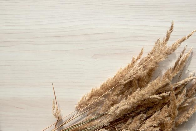 Bukiet kłosków. rama suchych trzcin na białym tle. streszczenie suchej trawy kwiaty, zioła na drewnianym stole na pastelowym beżowym tle. stylowy wystrój domu