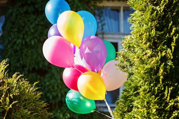Bukiet kolorowych balonów w zielonym tle.