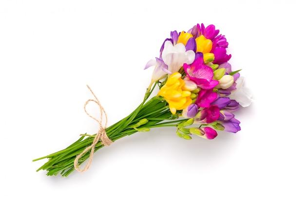 Bukiet kwiatów gałązki frezji na białym tle.