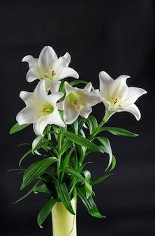 Bukiet kwiatów lilii na czarno białe kwiaty
