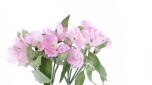 Bukiet kwiatów na białym tle na jasnym tle. kwiaty, które wprowadzają nastrój