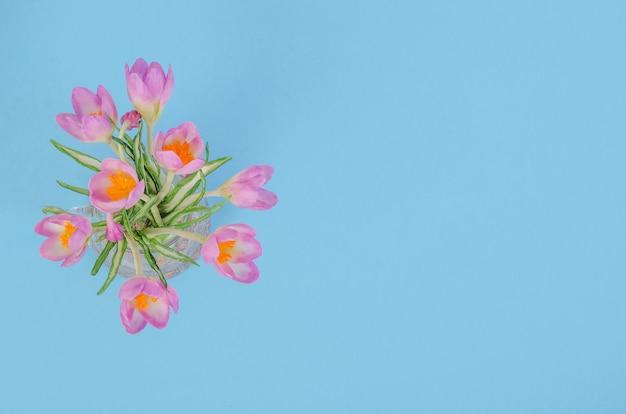Bukiet kwiatów pierwiosnków na niebieskim tle, z miejsca na kopię
