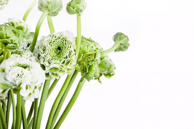 Bukiet kwiatów ranunkulyus