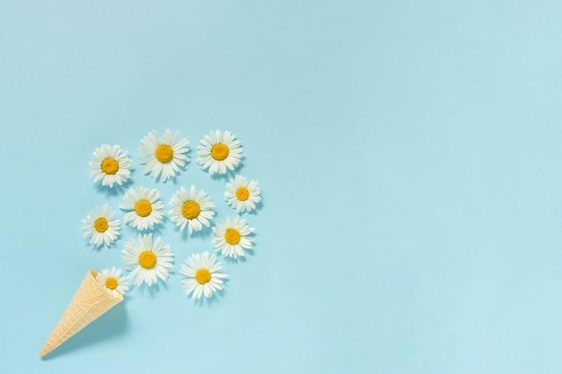Bukiet kwiatów rumianku stokrotki